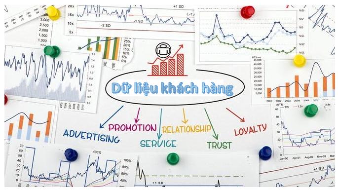 What is Bien Hoa Customer Data?